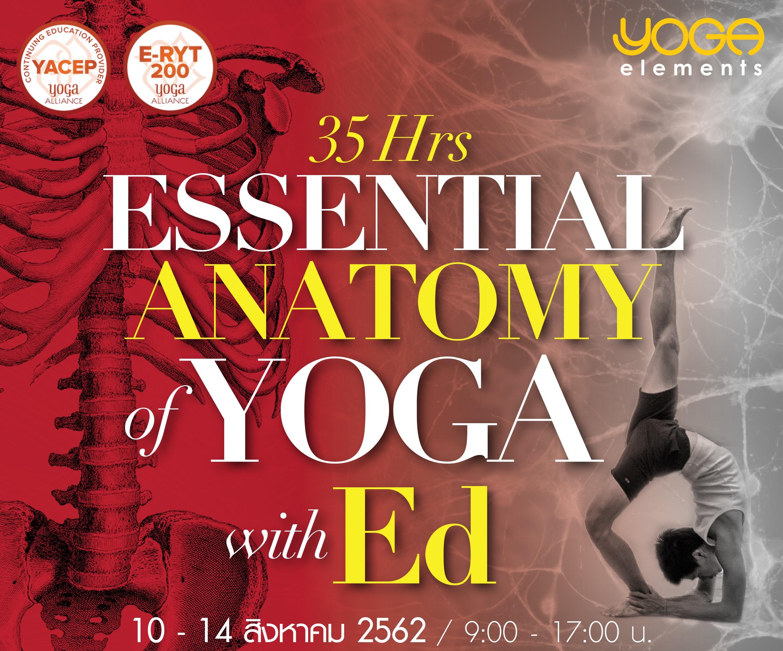 Essential Anatomy of Yoga