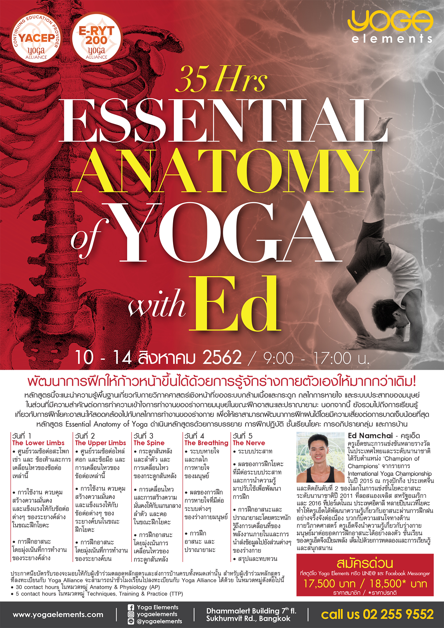 Essential Anatomy of Yoga with Ed