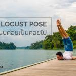 Locust Pose แบบค่อยเป็นค่อยไป