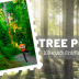 Tree Pose ไม้ใหญ่เติบโตได้ไม่สิ้นสุด