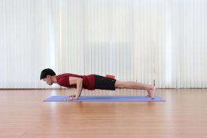 Chaturanga Squeezes Block